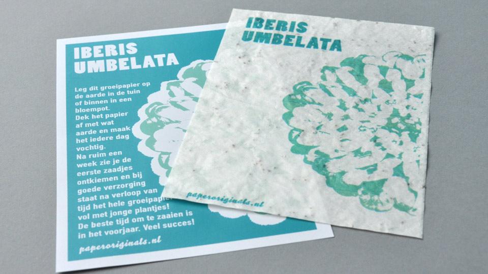Kaart Iberis Umbelata